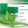สบู่สมุนไพร Herbal Acne Soap
