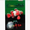 ปลาการ์ตูนซิลิโคลนเรืองแสงสีแดง