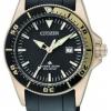 นาฬิกาข้อมือผู้หญิง Citizen Eco-Drive รุ่น EP6044-01E, Gold Excalibur Promaster 200m ISO Cert. Divers Watch