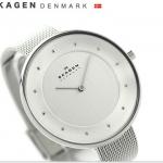 นาฬิกาผู้หญิง Skagen รุ่น SKW2140, Gitte Silver Dial Crystals Women's Watch