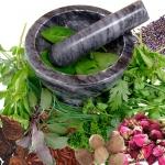 สมุนไพร Herbal