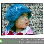 Mosaic Photo แบบ cell เล็ก+กลาง+ใหญ่ ขนาด 24x36นิ้ว + กรอบลอย เคลือบด้าน