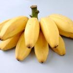 กล้วยหักมุก ประโยชน์และสรรพคุณของกล้วยหักมุก