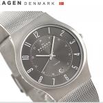 นาฬิกาผู้ชาย Skagen รุ่น 233XLTTM, Gunmetal Grey Dial Titanium Case Men's Watch