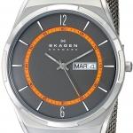 นาฬิกาผู้ชาย Skagen รุ่น SKW6007, Melbye Titanium Mesh Men's Watch