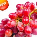องุ่นแดงหวาน Sweet Red Grape Seeds / 10 เมล็ด