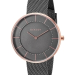 นาฬิกาผู้หญิง Skagen รุ่น SKW2584, Gitte Quartz Women's Watch