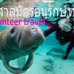 Eco tours ทัวร์กิจกรรมอนุรักษ์ทะเล