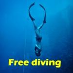 Free diving สงขลา