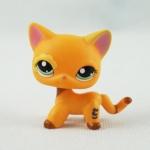 แมว Short Hair สีส้ม ตาสีเขียว #1643