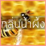 # กลิ่นน้ำผึ้ง