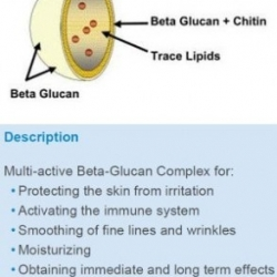 Beta Glucan (Saccharomyces cerevisiae extract)