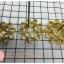 พิมพ์ดอกจอก ทองเหลือง ขนาด 9 ซม thumbnail 1