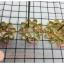 พิมพ์ดอกจอก ทองเหลือง ขนาด 9 ซม thumbnail 2