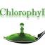 สารสกัด คลอโรฟิลล์ (ขี้ไหม) (Cholophly Extract) 100 g.