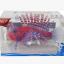 ปลาสิงโตซิลิโคลนเรืองแสงสีแดง+ฟ้า(ตัวใหญ่) thumbnail 1