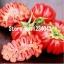 มะเขือเทศ Big Zapotec ruffled tomato seeds / 20 เมล็ด thumbnail 1