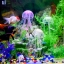 แมงกระพรุนซิโคลน สีชมพู (ขนาดเล็ก สีสดใสไม่เรืองแสง) thumbnail 2
