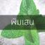 # พิมเสน (Borneo Camphor) thumbnail 1