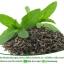 สารสกัด ชาเขียว (Green Tea Extract) 100 ml.