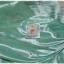 เดรสสั้น ผ้าชีฟอง เสื้อคอปก แขนสั้น สีขาว เอวจั๊ม กระโปรง สีเขียว ลายดอก thumbnail 4