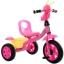 รถขาไถ จักรยานสามล้อปั่น หนอนน้อย LNS676 thumbnail 1