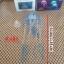 แมงกระพรุนซิโคลน สีฟ้า(ขนาดเล็ก สีสดใสไม่เรืองแสง) thumbnail 4
