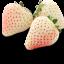 สารสกัดสตรอเบอรี่สีขาว(White Strawberry Extract )