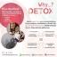 Synovy Detox Fiber ซินโนวี่ดีท็อกซ์ (ไฟเบอร์) 2 กล่อง thumbnail 17