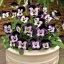 Viola Pansy Micky ดอกหน้าแมว / 30 เมล็ด thumbnail 1