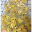 ตุ๊กตาไอซิ่ง ปิกาจู ตุ๊กตาน้ำตาลไอซิ่ง icing (3ซม) thumbnail 1
