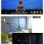 สติกเกอร์หอไอเฟิลเรืองแสง(ลายดอกจัน) thumbnail 3