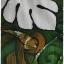 เดรสยาว คอกลม แขนยาว ซิปหลัง พิมพ์ลาย thumbnail 2