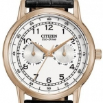 นาฬิกาผู้ชาย Citizen Eco-Drive รุ่น AO9003-16A, Multi-Dial Calendar Elegant
