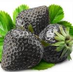 สตรอเบอรี่ดำ Black strawberry /30 เมล็ด