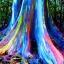 ยูคาลิปตัส สีรุ้ง Rainbow Eucalyptus / 30 เมล็ด thumbnail 3