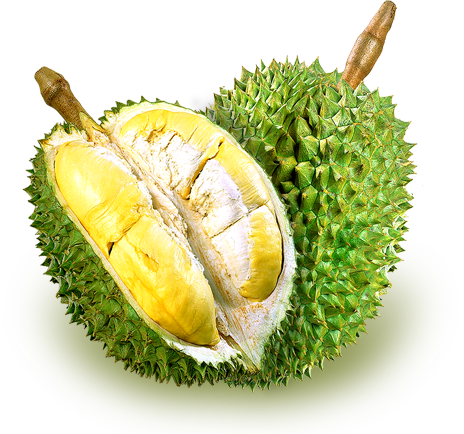 dehydrated fruit healthy durian fruit