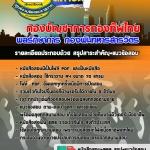 #แนวข้อสอบ พลรักษาการ กองร้อยบังคับการ กองบัญชาการกองทัพไทย [[PDF.]]