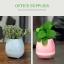 กระถางต้นไม้อัจฉริยะ (Smart Music Flower-pots) thumbnail 6