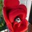 คาร์ซีทมือสอง Aprica Marshmallow สีแดง + หมวก รหัส CS0071 thumbnail 6